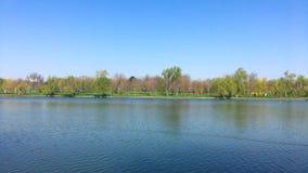 Τοπίο πάρκων στην πόλη του Βουκουρεστι'ου απόθεμα βίντεο