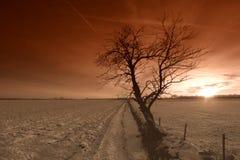 τοπίο πέρα από το χιονώδες η στοκ εικόνες με δικαίωμα ελεύθερης χρήσης