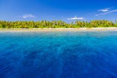 τοπίο παραλιών τροπικό Όμορφοι μπλε θάλασσα και φοίνικες και μπλε ουρανός Τροπικό έμβλημα φύσης Στοκ εικόνα με δικαίωμα ελεύθερης χρήσης