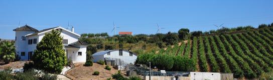 τοπίο Πορτογαλία Στοκ φωτογραφία με δικαίωμα ελεύθερης χρήσης