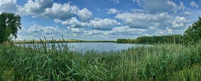 Τοπίο, ποταμός, δασικό πανόραμα στοκ φωτογραφία