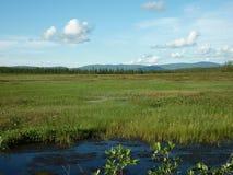 Τοπίο, ποταμός στοκ εικόνες με δικαίωμα ελεύθερης χρήσης