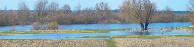 Τοπίο ποταμών άνοιξη στοκ εικόνα