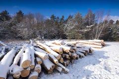 Τοπίο που καλύπτεται χειμερινό από το χιόνι στοκ εικόνα