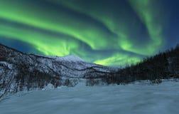 Τοπίο που καρυκεύεται χειμερινό με τα borealis αυγής στοκ εικόνα