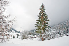 Τοπίο που καλύπτεται λοφώδες στο χιόνι Στοκ Εικόνες