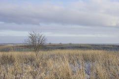 Τοπίο πτώσης στη ρωσική επαρχία Στοκ εικόνες με δικαίωμα ελεύθερης χρήσης