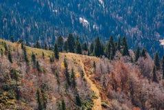 Τοπίο, πτώση στα βουνά στοκ φωτογραφία με δικαίωμα ελεύθερης χρήσης
