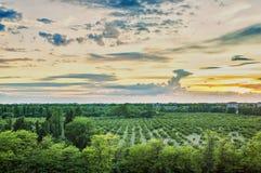 Τοπίο πόλεων, όμορφος ζωηρόχρωμος ουρανός πέρα από τον κήπο πόλεων Στοκ εικόνες με δικαίωμα ελεύθερης χρήσης