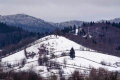 Τοπίο Ρουμανία βουνών στοκ εικόνες