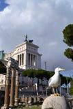 τοπίο Ρωμαίος στοκ φωτογραφίες με δικαίωμα ελεύθερης χρήσης