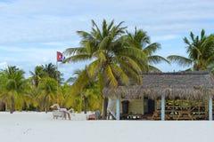 Τοπίο σε μια εξωτική παραλία με τους φοίνικες Στοκ φωτογραφία με δικαίωμα ελεύθερης χρήσης