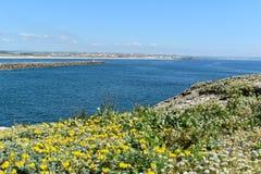 Τοπίο σε Peniche, Πορτογαλία Στοκ φωτογραφία με δικαίωμα ελεύθερης χρήσης