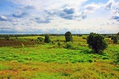 τοπίο σκωτσέζικα χλόης Στοκ εικόνα με δικαίωμα ελεύθερης χρήσης