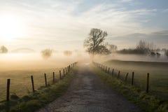 Τοπίο στην ομίχλη Στοκ φωτογραφία με δικαίωμα ελεύθερης χρήσης