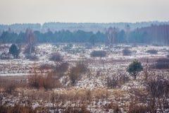 Τοπίο στην περιοχή Podlasie Στοκ εικόνα με δικαίωμα ελεύθερης χρήσης