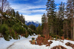 Τοπίο στις Άλπεις με τα φρέσκα πράσινα λιβάδια βουνών και χιονοσκεπείς κορυφές βουνών στο υπόβαθρο Αυστρία Τύρολο Στοκ Φωτογραφία