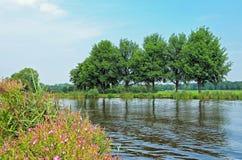 Τοπίο στις Κάτω Χώρες Στοκ εικόνες με δικαίωμα ελεύθερης χρήσης