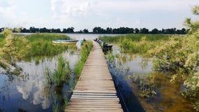Τοπίο στις του δέλτα βιντεοσκοπημένες εικόνες Δούναβη, Ρουμανία απόθεμα βίντεο