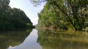 Τοπίο στο δέλτα Δούναβη, Ρουμανία απόθεμα βίντεο