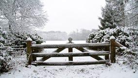 Τοπίο στο χιόνι στις Κάτω Χώρες απόθεμα βίντεο