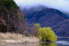 Τοπίο της λίμνης Kawaguchiko, Ιαπωνία Στοκ φωτογραφία με δικαίωμα ελεύθερης χρήσης