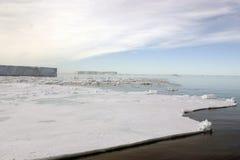 τοπίο της Ανταρκτικής Στοκ φωτογραφία με δικαίωμα ελεύθερης χρήσης