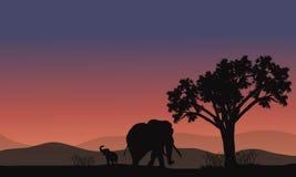Τοπίο της Αφρικής με τη σκιαγραφία ελεφάντων Στοκ Εικόνες