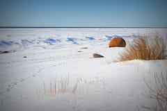 Τοπίο της βαλτικής παραλίας σε μια χειμερινή ημέρα στοκ φωτογραφία