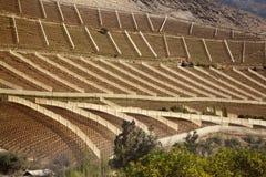 Τοπίο της βόρειας Χιλής στοκ εικόνες