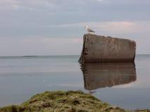 Τοπίο της ειρήνης και του spokoystaiya Shtil Στοκ Εικόνα