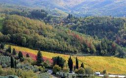 τοπίο της επαρχίας κοντά στο Αρέζο, Τοσκάνη, με έναν ζωηρόχρωμο αμπελώνα στοκ φωτογραφία