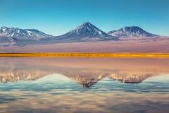 Τοπίο της ερήμου Atacama στη Χιλή ανθίστε το χρονικό χειμώνα χιονιού στοκ εικόνες με δικαίωμα ελεύθερης χρήσης