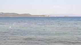 Τοπίο της θερινής θάλασσας στο νησί Ελλάδα Euboea - παραδοσιακά αλιευτικά σκάφη φιλμ μικρού μήκους