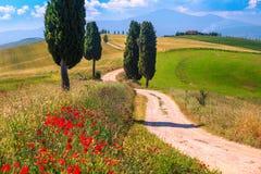 Τοπίο της θερινής Τοσκάνης με τους τομείς σιταριού και τον αγροτικό δρόμο, Ιταλία στοκ φωτογραφία