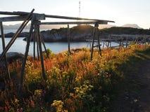 Τοπίο της λιμενικής Νορβηγίας Άσπρο βόρειο καλοκαίρι nigts Στοκ φωτογραφία με δικαίωμα ελεύθερης χρήσης
