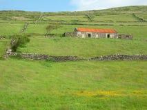 τοπίο της Ιρλανδίας πεδίων Στοκ Εικόνες
