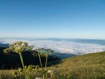 Τοπίο της κίνησης της υδρονέφωσης στο βουνό και το λόφο στοκ εικόνα