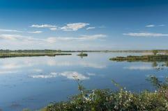 Τοπίο της λιμνοθάλασσας στο Po του δέλτα εθνικό πάρκο ποταμών, Ita Στοκ εικόνες με δικαίωμα ελεύθερης χρήσης