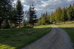 Τοπίο της οδικής Misty επαρχίας με τα δάση στοκ εικόνες