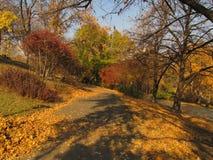 Τοπίο της Ουγγαρίας ομορφιάς, φωτογραφία πάρκων Φθινόπωρο Στοκ Φωτογραφία