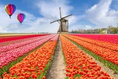 Τοπίο της ολλανδικής ανθοδέσμης των τουλιπών με ballon ζεστού αέρα Στοκ Εικόνες