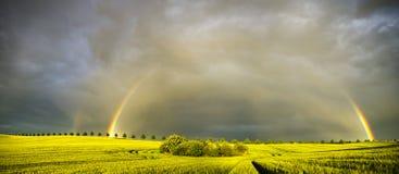 Τοπίο της Τοσκάνης, τομέας φθινοπώρου, Ιταλία, Val, Δ, Orcia στοκ εικόνες με δικαίωμα ελεύθερης χρήσης