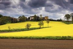 Τοπίο της Τοσκάνης - τομέας canola Στοκ φωτογραφία με δικαίωμα ελεύθερης χρήσης