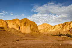 Τοπίο της όασης Fint κοντά στην πόλη Ouarzazate Στοκ Εικόνα