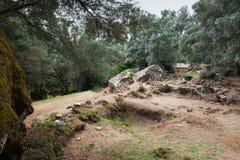 Τοπίο της megalithic περιοχής Filitosa Κορσική στοκ φωτογραφίες με δικαίωμα ελεύθερης χρήσης