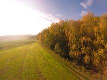 Τοπίο τομέων το φθινόπωρο Στοκ εικόνα με δικαίωμα ελεύθερης χρήσης