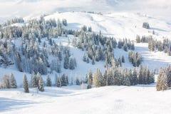 Τοπίο τοπίου σε αυστριακό Apls στο σκι τοπικό, τοπικό LAN χειμερινού χιονιού Στοκ Εικόνα