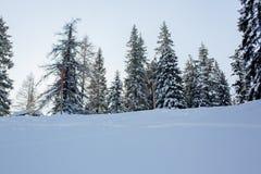 Τοπίο τοπίου σε αυστριακό Apls στο σκι τοπικό, τοπικό LAN χειμερινού χιονιού Στοκ Εικόνες