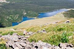 Τοπίο τοπίων βουνών με το μπλε ουρανό επάνω από το timberline Στοκ Εικόνα